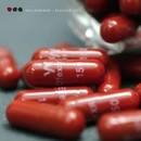 Placebo (EP)/Hollowgram