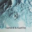Seeking The Moon/Carlos B
