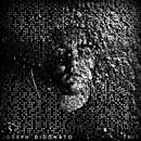 True (Deluxe)/Joseph DiDonato