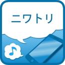 ニワトリ/うた&メロProject