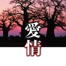 ハイパーサウンド 愛情/Ken Furuya