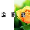 ハイパーサウンド 成開運/江部賢一