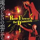 電気じかけの恋だから/Rude Flower & The Diamonds