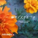 瞬光ノスタルジア feat.Chika/balsamicos