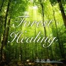 Forest Healing ~森のシンフォニー~/魔界Symphony