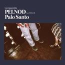 PELNOD feat. 中納良恵/Campanella