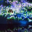 花と人、コントロールできないけれども、共に生きる - Kunisaki Peninsula/高橋英明 teamLab