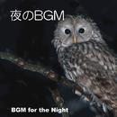 夜のBGM/北ドイツ・フィルハーモニー管弦楽団、ベス・ウィリアムズ・アンサンブル、ニュルンベルク・マスターシンガーズ、ニューヨーク・フィロムジカ・ウィンズ他