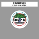I Would Stay/Soundcube