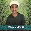 The Melodies EP/PhonixDaK