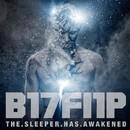 The Sleeper Has Awakened/B17Fl1P