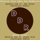 Darbinyan Remixes/Bandulu Dub