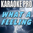 What a Feeling (Originally Performed by One Direction) [Instrumental Version]/Karaoke Pro