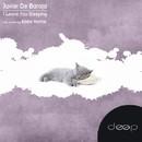 I Leave You Sleeping/Javier De Baraja