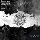 Labyrinth/Transcient