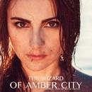The Wizard Of Amber City/Maxim Velpler