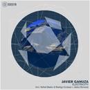 Electricity/Javier Ganuza
