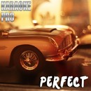 Perfect (Originally Performed by One Direction) [Instrumental Version]/Karaoke Pro
