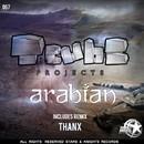 Arabian/Tcubeprojects
