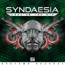 Guns In The Air EP/Syndaesia