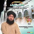 Meethay Nabi Ka Roza/Muhammad Shakil Attari