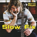 Slow Fix/Bernie Hayes