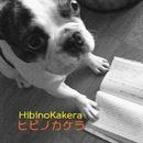 ヒビノカケラ Vol.11/ヒビノカケラ
