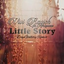 Little Story/Vivi Ravish
