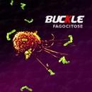 Fagocitose/Buckle