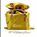 Hater Free/Zmny