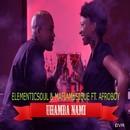 Uhamba Nami/Elementicsoul