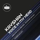 Voice In My Head/Kayshan