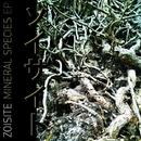 Mineral Species/Zoisite