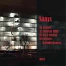 Seizure/Sanys