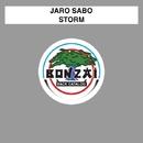 Storm/Jaro Sabo