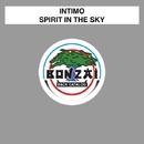 Spirit In The Sky/Intimo