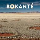 Strange Circles/BOKANTE