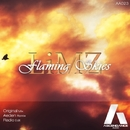Flaming Skies/LiMZ