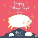 眠れるオルゴール ベスト ソルフェジオ528Hz/ヒーリング・ライフ