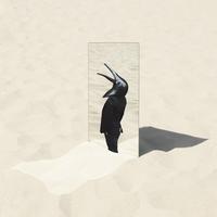 The Imperfect Sea~デラックス・エディション (PCM 96kHz/24bit)/ペンギン・カフェ