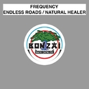 Endless Roads / Natural Healer/Frequency