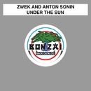 Under The Sun/Zwek and Anton Sonin