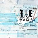 The Blue Marble/Fremdkunst