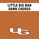 Dawn Chorus/Little Big Man