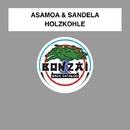 Holzkohle/Asamoa & Sandela