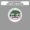 How Things Change/Electroaspect