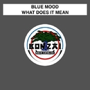 What Does It Mean/Blue Mood