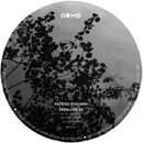 Parallax EP/Patrick Richard