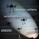 Surveillance EP/Damon Vallero