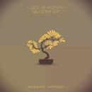 Bloom EP/Luiz & Winth